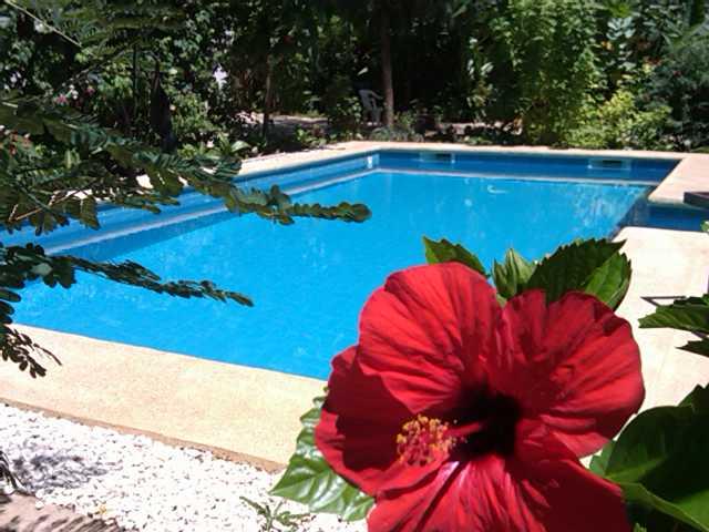 constructeur de piscine senegal